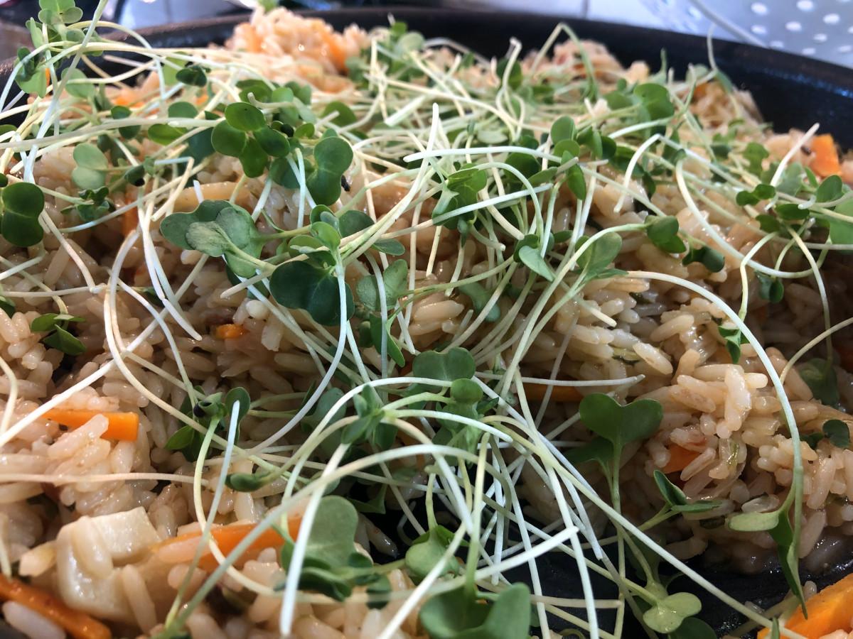 Asiatiskt ris